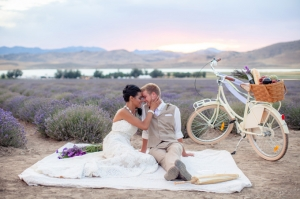 lavender styled shoot | Amy Lashelle Photography-15