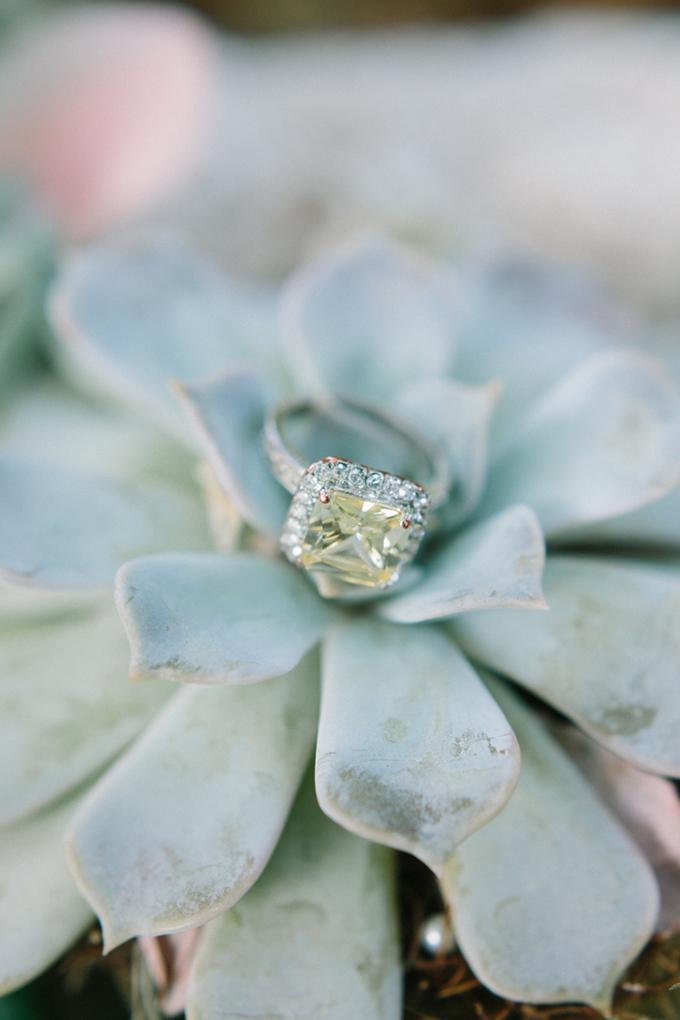 gorgeous yellow diamond   Erica J Photography