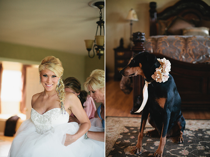 bride and her pup | Courtney Reese Photography | Glamour & Grace
