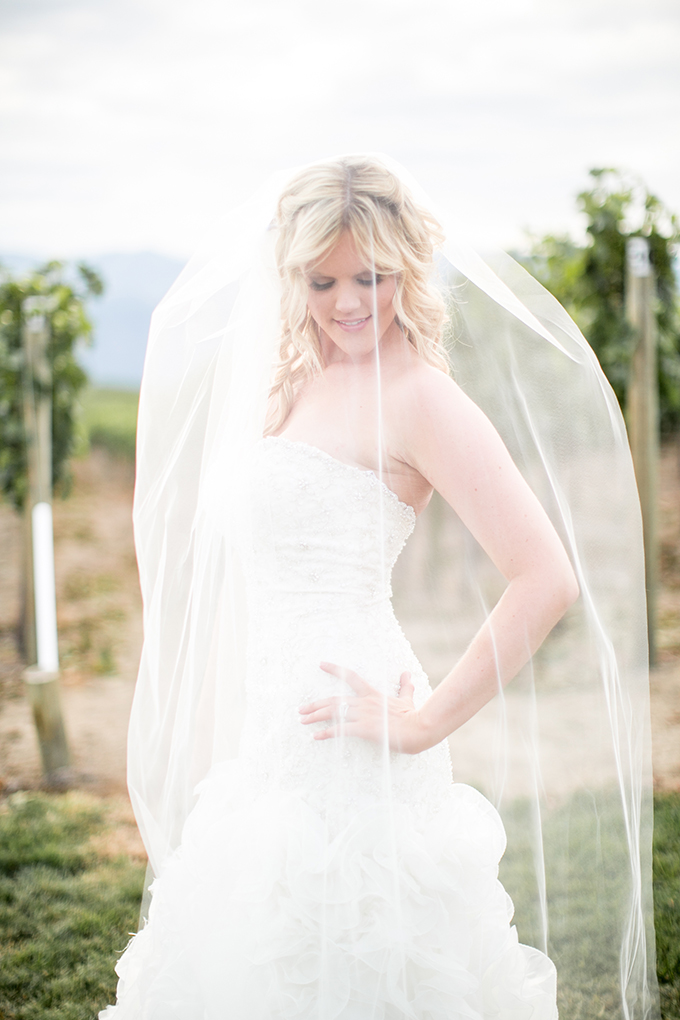 pink vineyard wedding | Jacquelynn Brynn Photography | Glamour & Grace