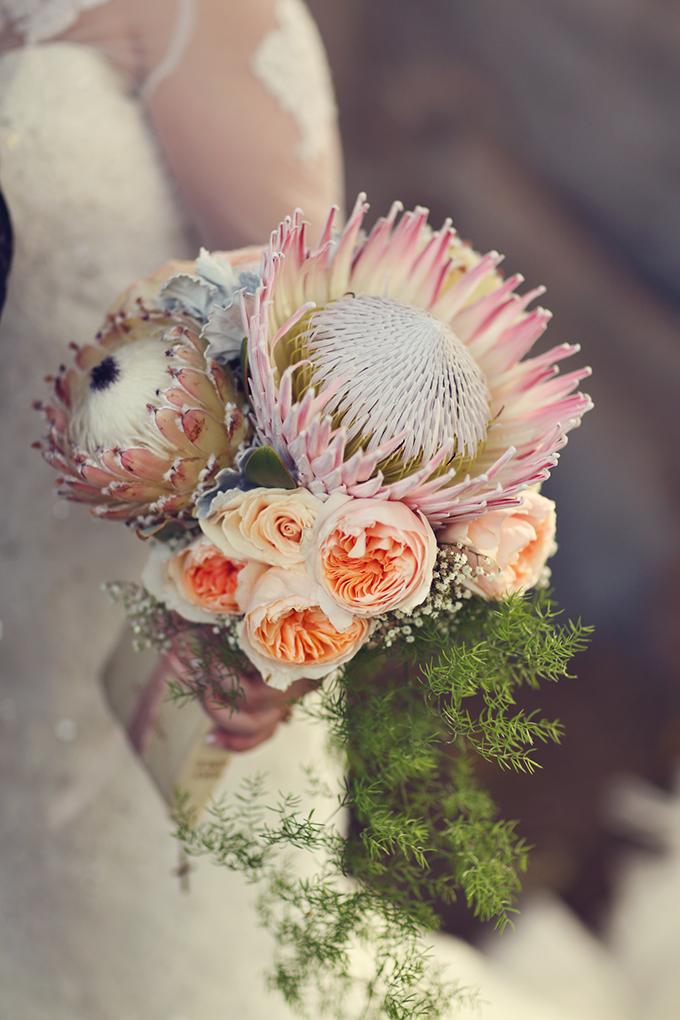 protea bouquet | Lukas & Suzy VanDyke | Glamour & Grace