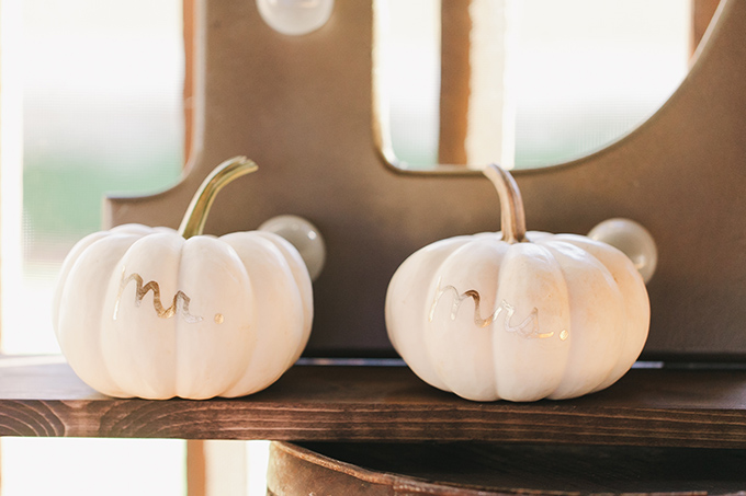 Mr and Mrs pumpkins| Jessica Connery Photography | Glamour & Grace