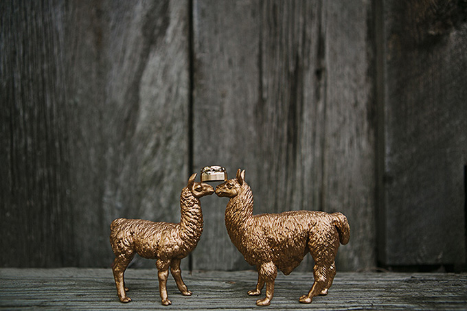 llama ring shot | Tammy Swales | Glamour & Grace