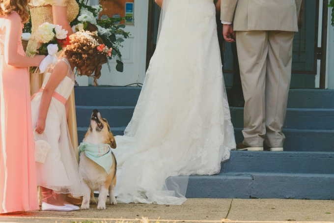 puppy in ceremony | Jessie Holloway Photography | Glamour & Grace