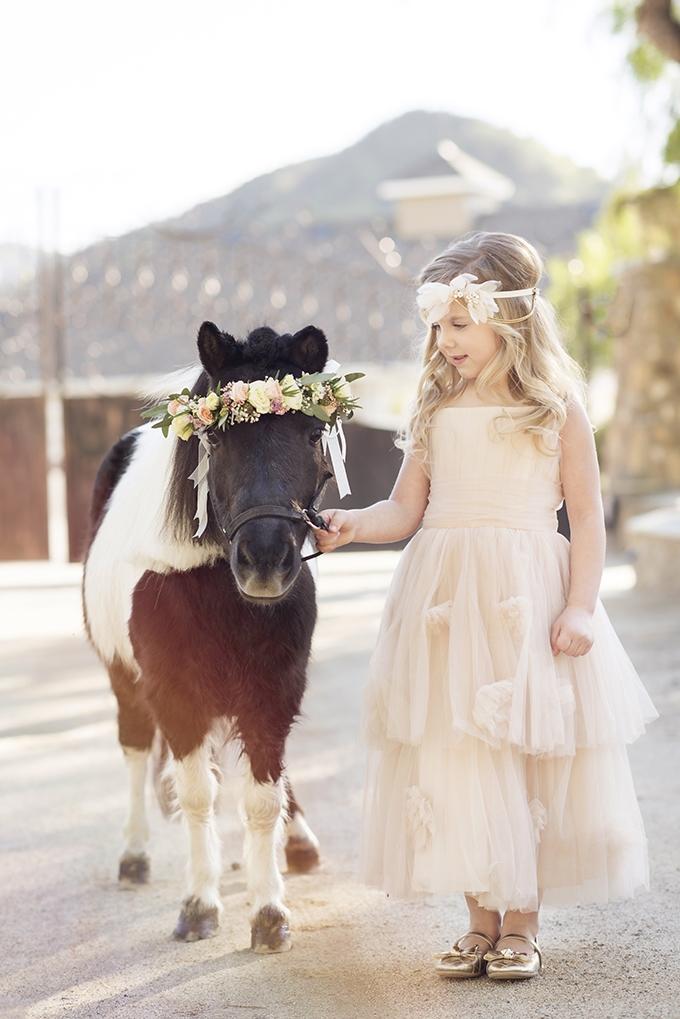 glam horse inspired wedding glamour amp grace