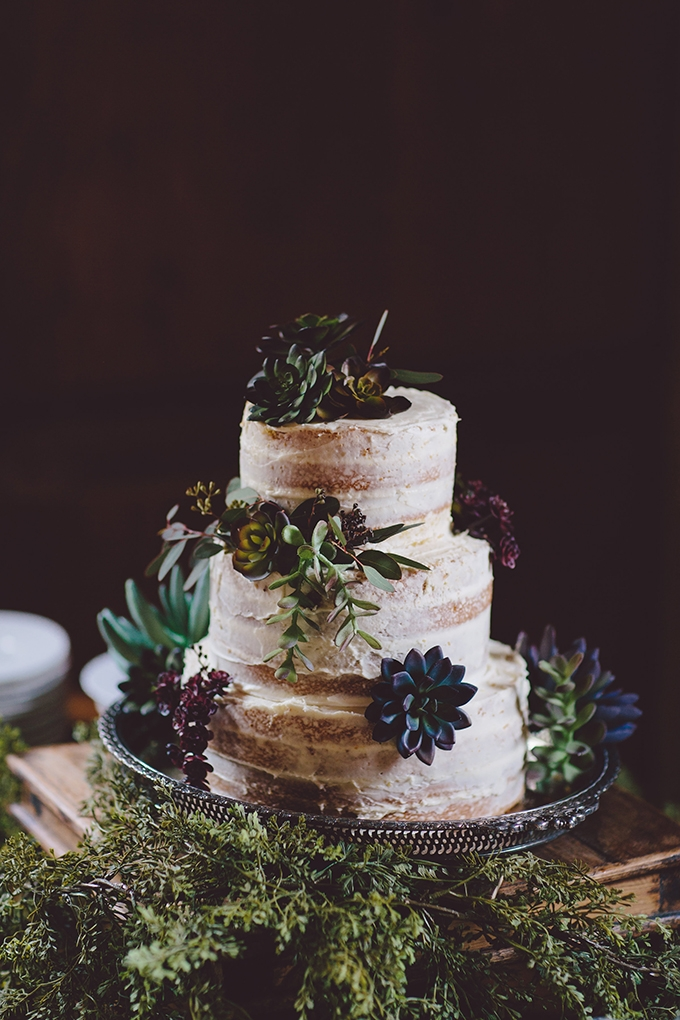 succulent wedding cake | Alyssa Shrock Photography | Glamour & Grace