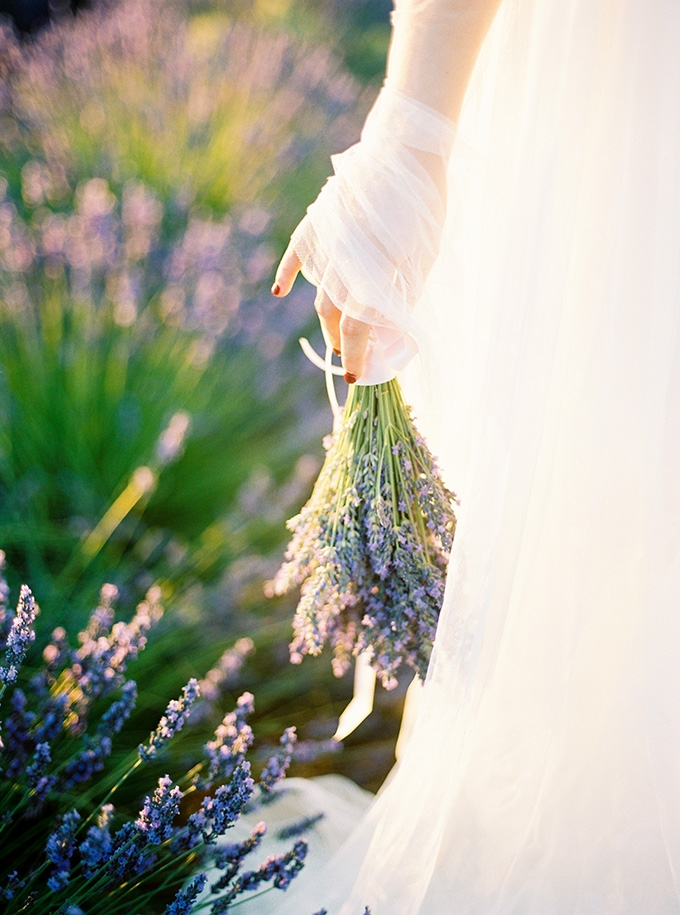 lavender anniversary session | Buenas Photos | Glamour & Grace